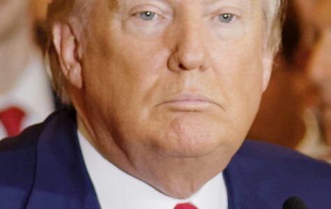 Opinion: Donald Trump, American Terrorist