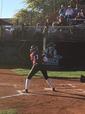New Mexico State Softball hopes to build on a youth-driven 2017 season