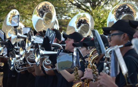 An Explosive Performance – The Pride's Annual Concert on the Green