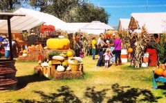 Mesilla Valley Corn Maze Enters Final Weekend