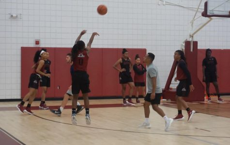 Letter to the Editor: NMSU Women's Basketball in the Wrong