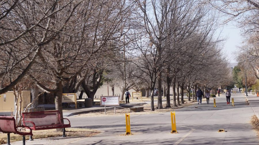 As+trees+start+to+recover+from+winter%2C+campus+life+also+starts+to+bloom+as+well.