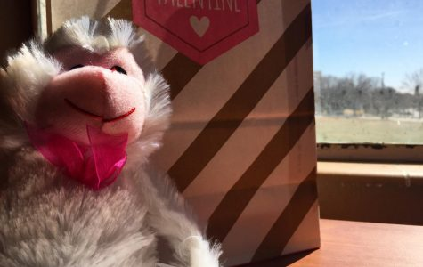 Gift tips for significant others on Valentine's Day