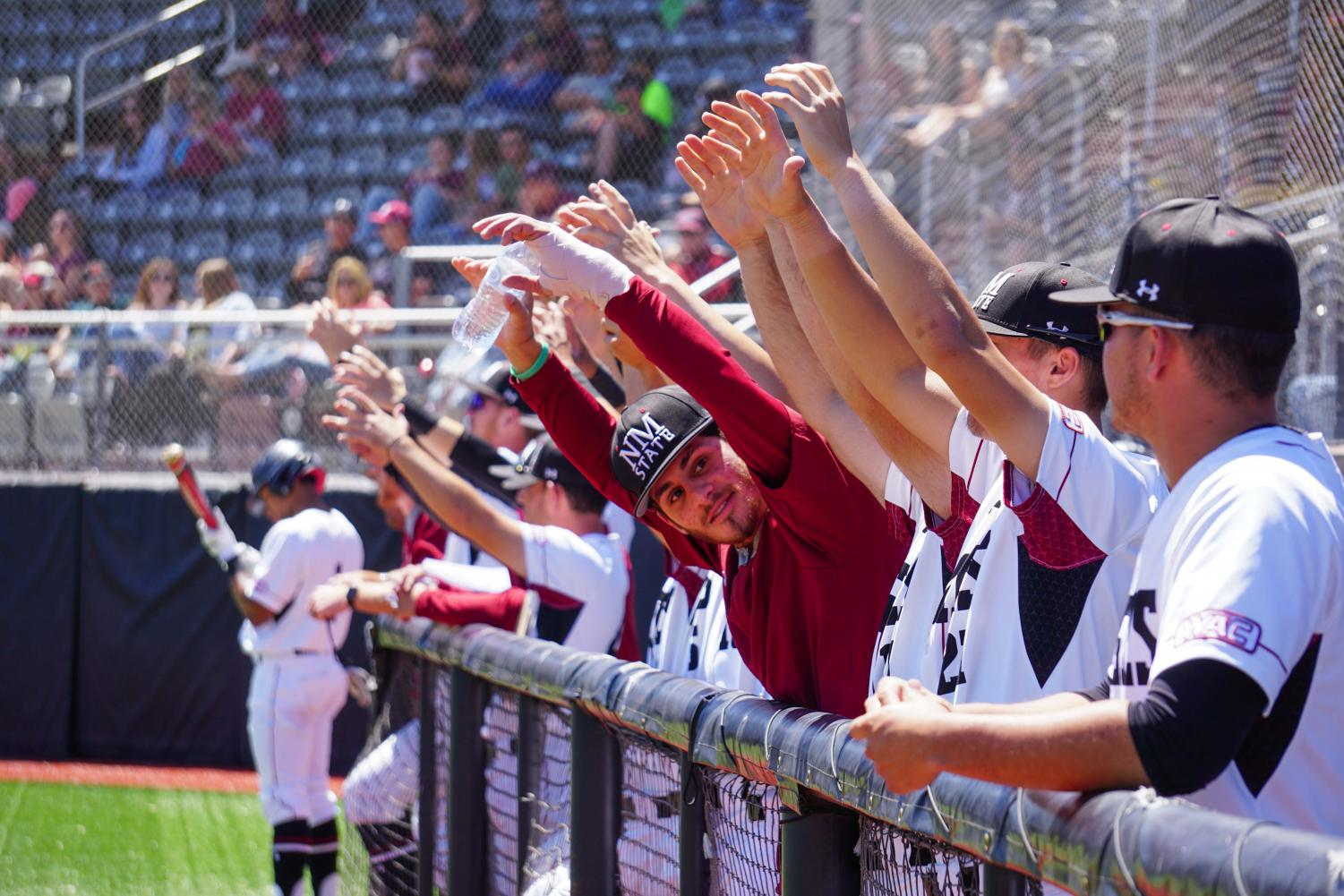 The New Mexico State Baseball team celebrates after one of their comrades  achieves a base hit; the team has an overall record of 27-14 and 11-4 in the WAC.