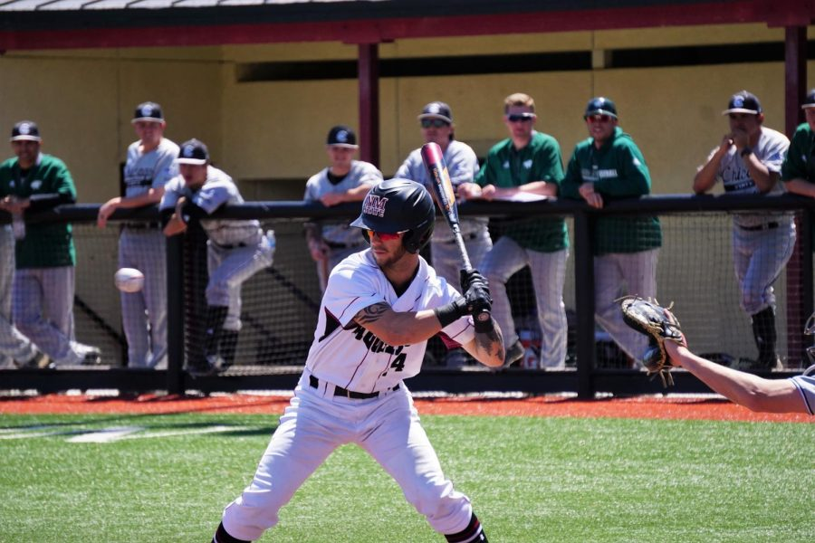 NMSU baseball collects 30th win in front of record breaking crowd