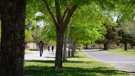 NMSU students discuss benefits to unpaid internships