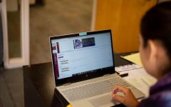NMSU offers 100 percent online degrees at a price
