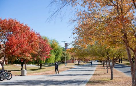 NMSU students yearn for long-awaited Thanksgiving break