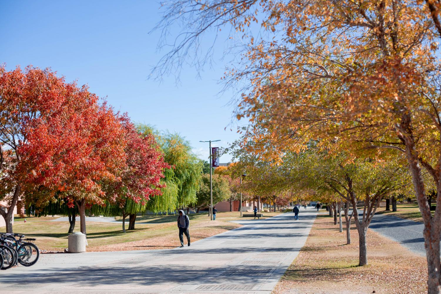 Campus begins to have a Fall look to it as students prepare to leave for Thanksgiving break.