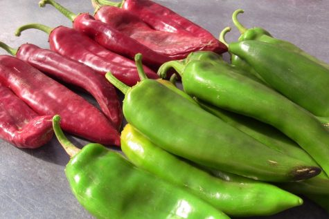 New Mexico Chile heads to space