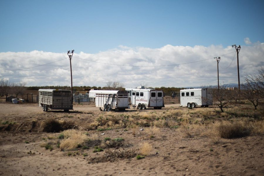 NMSU Rodeo team alleges $8000 worth of equipment was stolen from trailers in January.