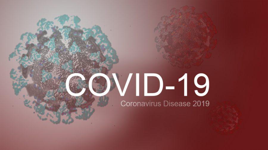 Coronavirus 19 (COVID-19) image.