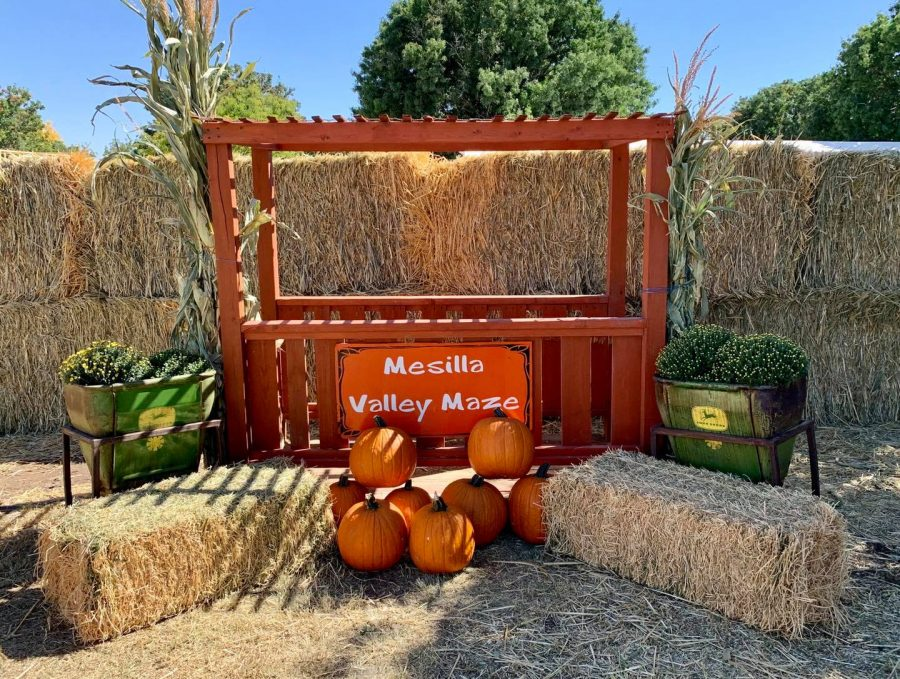 Available+attractions+at+the+Mesilla+Valley+Maze+are+limited+this+year.+Image+courtesy+of+Mesilla+Valley+Maze+on+Facebook.